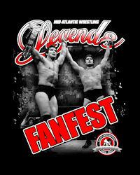 2014 Fanfest Logo