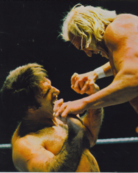 Bruno Sammartino vs Billy Graham