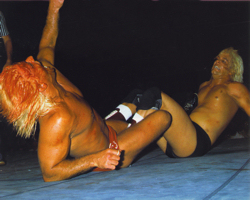 Ric Flair vs Buddy Landel