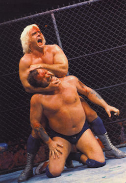 Harley Race and Ric Flair